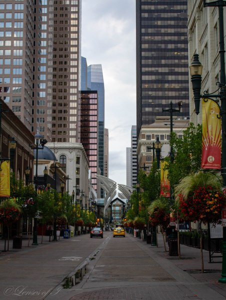 Downtown stephen Ave